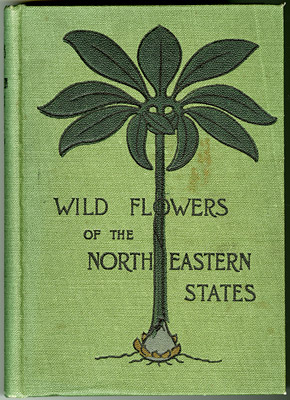 Cover of Wild Flowers of the North-Eastern States